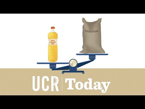 UCR Today: Soybean Oil causes more obesity than Fructose