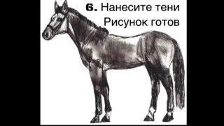 Как нарисовать лошадь. Урок рисования поэтапно.(Как нарисовать лошадь. Урок рисования поэтапно. В этом видео вы научитель рисовать лошадь., 2016-02-26T11:27:35.000Z)