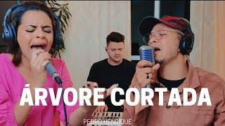 Árvore Cortada - Pedro Henrique feat. Dinha Viana [COVER]