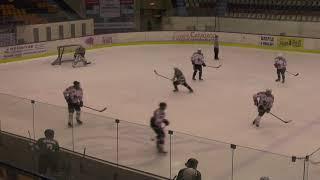 Хоккей ЛНХЛ Антикор-Ударник 16.11.2017 г. 2 пер. Пермь
