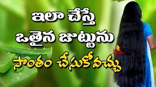 Grow Long Hair Fast With Aloe Vera II No Hair Loss I Telugu Beauty Tips  Vanitha TV
