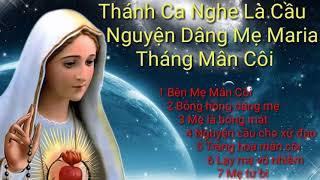 Nhc Thnh Ca Mn Ci dng M Maria