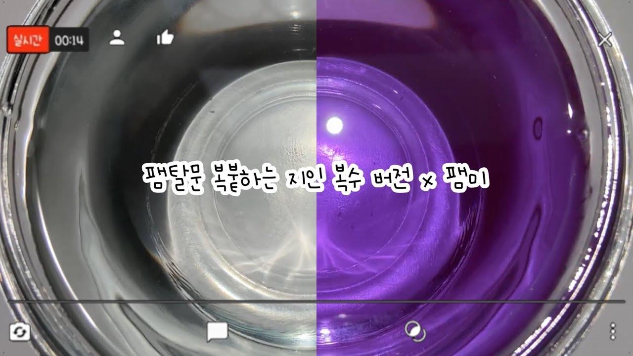 팸탈문 복붙하는 지인 복수 버전 // 이상한 스토리 // 팸미 // 버실 //설참 // 다주