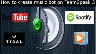 [How to]TeamSpeak3 Music Bot Tutorial  2017/18 Short and Easy. YouTube, Spotify, WindowsMediaPlayer. 2017 Video