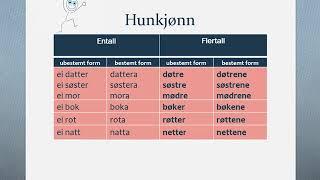 Substantiv uregelrett bøying, norwegian basic learner
