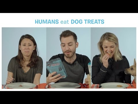 What happens if a dog eats viagra