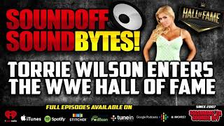 Torrie Wilson's POLARIZING Induction Into WWE Hall Of Fame