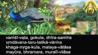 Gokul Bhajan - Radha Kunda Tata (Bhajan - BV Muni Maharaj)