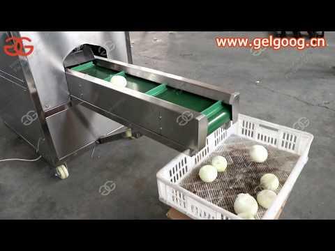 Industrial Onion Skin Peeling Machine Video