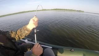 Квокеры-1. Моя первая рыбалка и сразу удача. Вываживание сома на 40 кг. Река Волга.