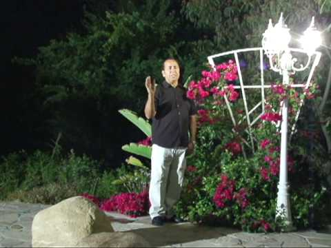 Wahed Wafa Music Video