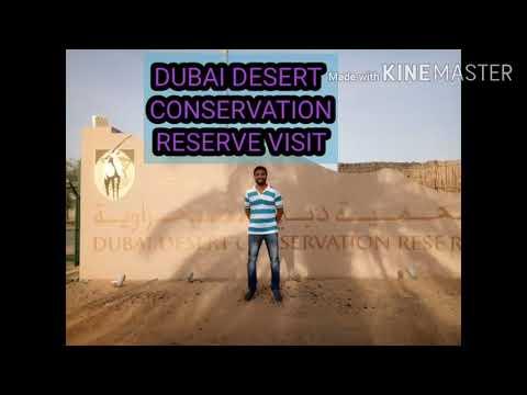 DUBAI DESERT CONSERVATION RESERVE VISIT…