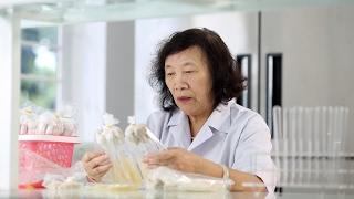 Bà Chúa Nấm l Khoa học là đam mê l PGS.TS Nguyễn Thị Chính