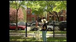 Eddie Arruza video files: The Plein Air Painters of Chicago