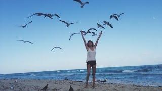 Майами влог ☀ жизнь- мечта, я одна с природой.