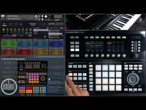 Umlaut Audio uBeat Features & Functionality Workflow