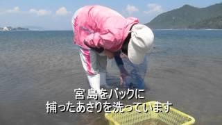2012年6月3日 広島県廿日市市上の浜 ほのぼの広島会 ほのぼの潮干...