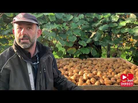 Kiwi en Lot et Garonne (reportage Radio COOL DIRECT)