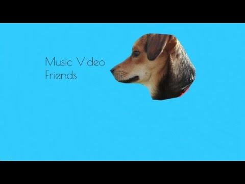♡ Friends - Marschmello & Anne-Marie (Mv) ♡