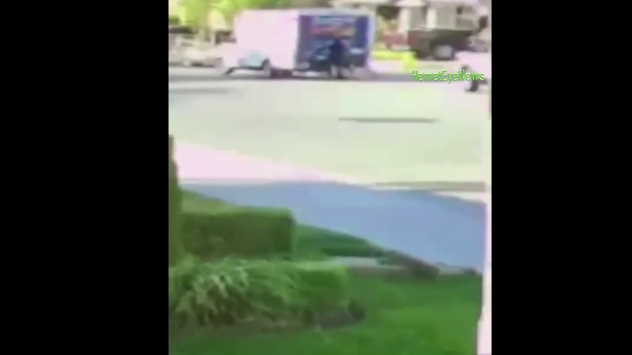 fedex driver caught on camera stealing dog in san jacinto