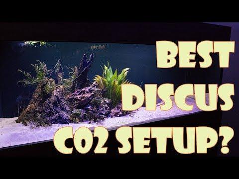 Adding Co2 to Discus tank