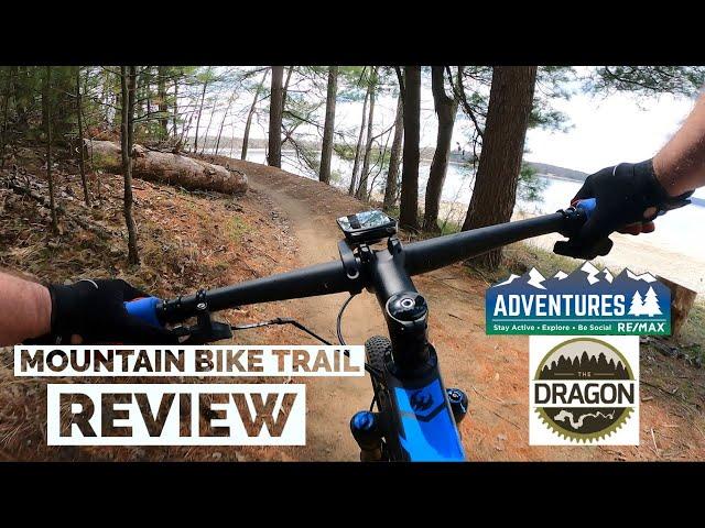 The Dragon Trail   Mountain Bike Trail Review