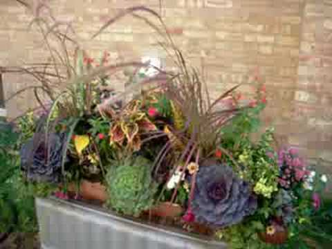 Container Garden Design Ideas courtyard patio container garden planting ideas Fall Container Garden Design Ideas Chicagobloomcom