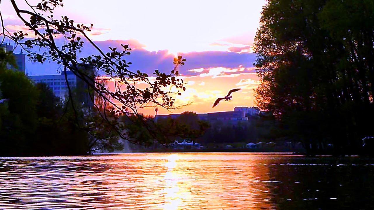 красивый вечер. картинки