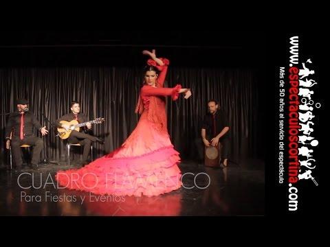 Flamenco Barcelona Para Eventos