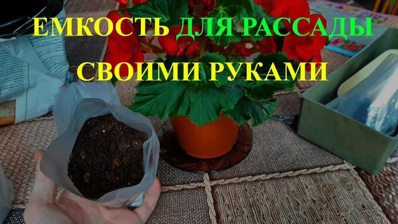 стаканчики под рассаду своими руками из пленки