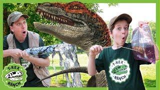 Dinosaurs & Science! DIY Leak Proof Bag Experiment & Raptor Dinosaur for Kids Educational Video