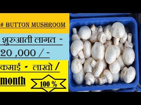 button mushroom | लागत 20,000 ! कमाई - लाखो रुपए प्रति माह !