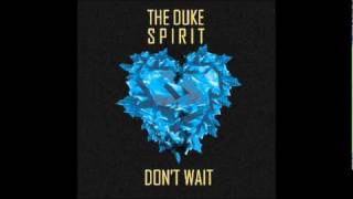 Watch Duke Spirit Dont Wait video