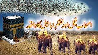 Ashab e Feel | Lashkar e Ababeel ka waqia | story of Abraha | Quranic story  | makkah , islam