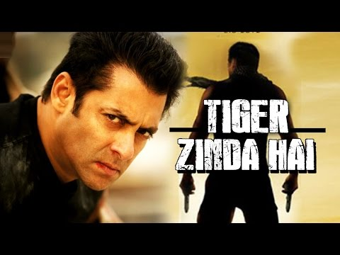 Interesting Details About Salman's Ek Tha Tiger Sequel | Bollywood News | 11th Aug 2016