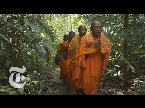 A Threat to Cambodia's Sacred Forests | Op-Docs | The New York Times