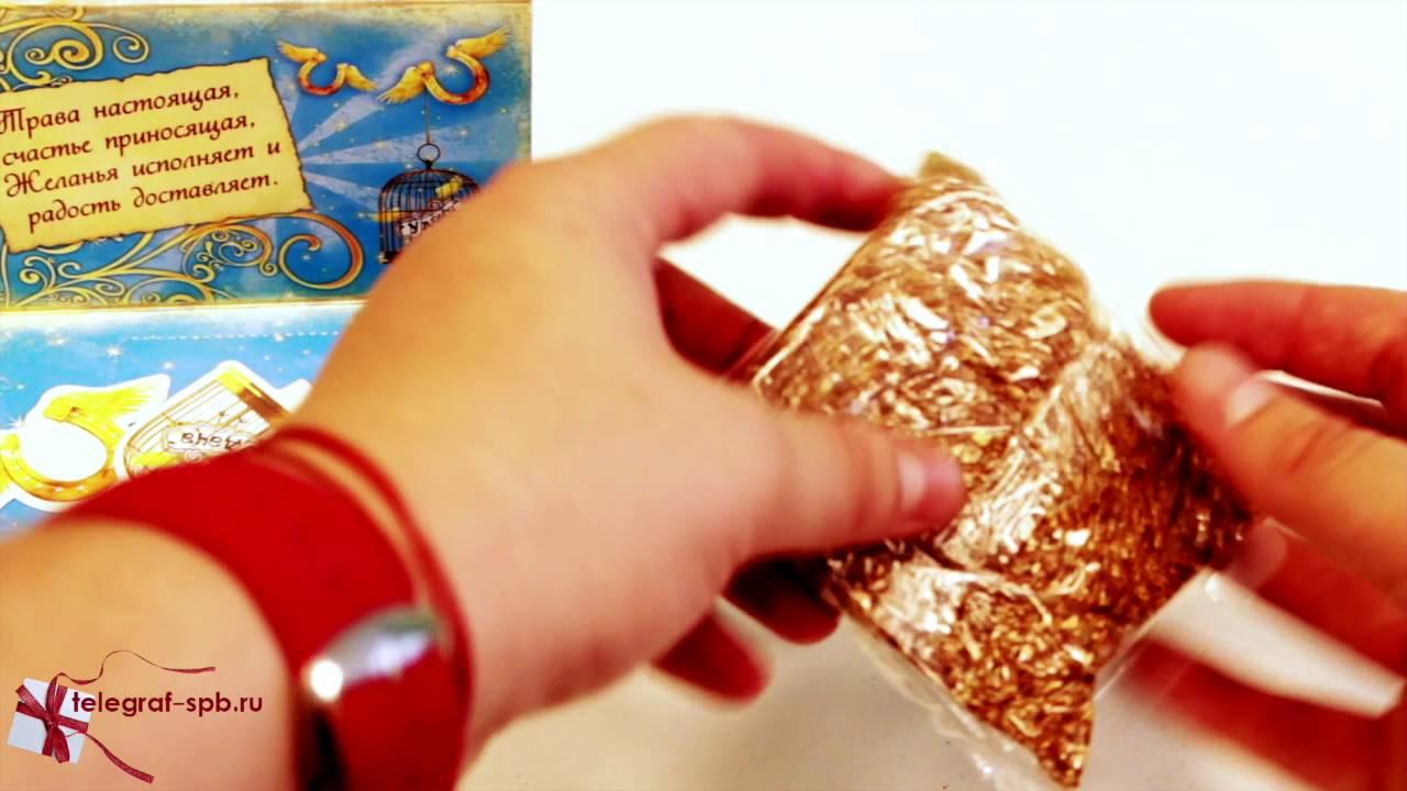 Голубые ели всех сортов и размеров выращенные в нашем питомнике и завезенные из европы. Саженцы голубой ели продаем в московском питомнике низкие цены и огромный ассортимент.