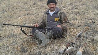 Keklik ve Tavşan avı chukar hunting Caza hisarcik 1  الحجل، ومطاردة الأرانب