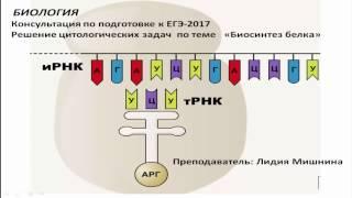 Биология. Подготовка к ЕГЭ-2017. Онлайн консультация ч. 1