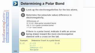 Rapid Learning: Chemical Bonding and Molecular Structures