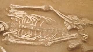 Philistine cemetery found near Ashkelon thumbnail