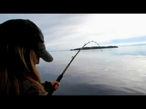 Halibut Fishing Out Of Port Hardy