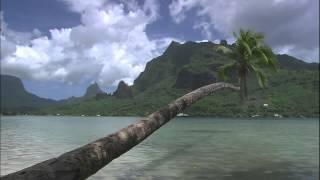 Музыка море острова и пальмы Райское место Таити