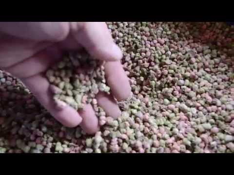 Небольшое видео о составе корма для рыб