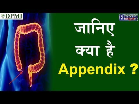 Appendix क्या होता है?   DPMI   Appendix