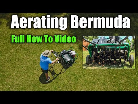 Aerating Bermuda Lawns - Full How To Video