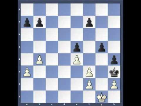 Find the Plan  Cohn vs Rubinstein (Good Move Guide by Bent Larsen)