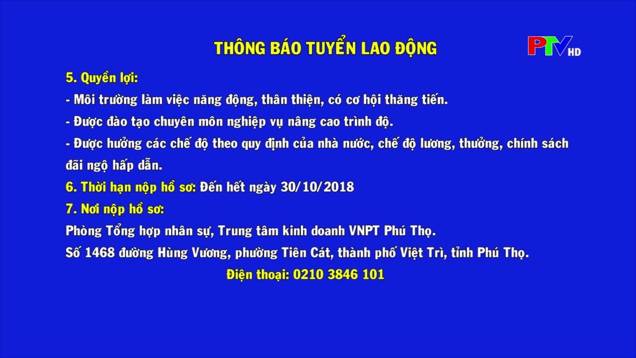 VNPT VinaPhone Phú Thọ   Tuyển dụng NVKD   Nhân viên kinh doanh