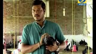 Krishidarshan - 15 June 2018 - यशोगाथा - कुक्कुट पालन