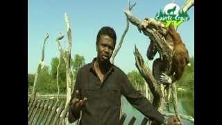 Animations de mai au Parc Animalier de Sainte-Croix